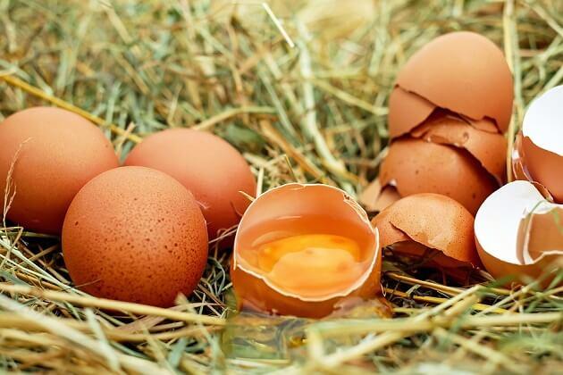 Yumurta Saklama Hakkında Bilinmeyenler